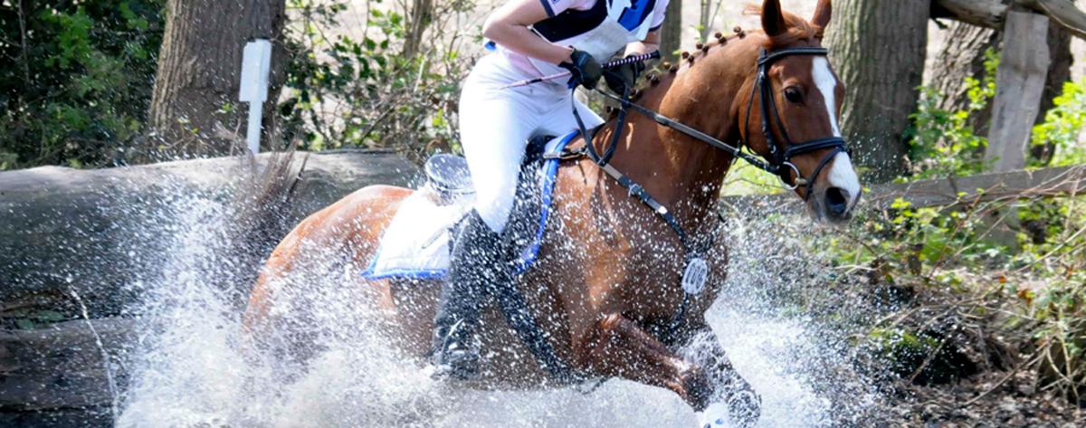 Wenn Gott gewollt hätte, dass es saubere Pferde gäbe, hätte er Spüli in´s Wasser getan!